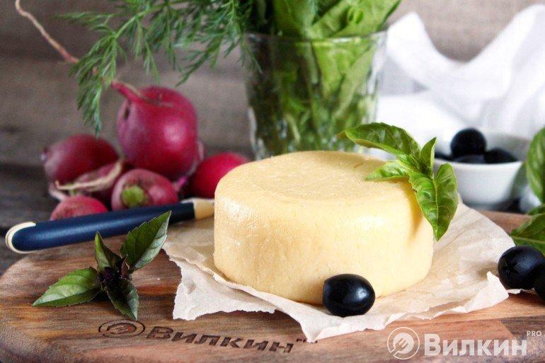 головка домашнего сыра