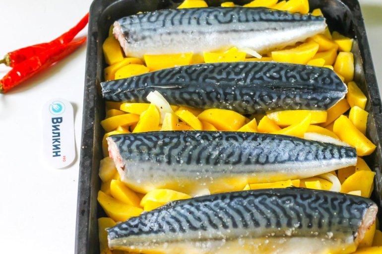 укладка рыбных тушек