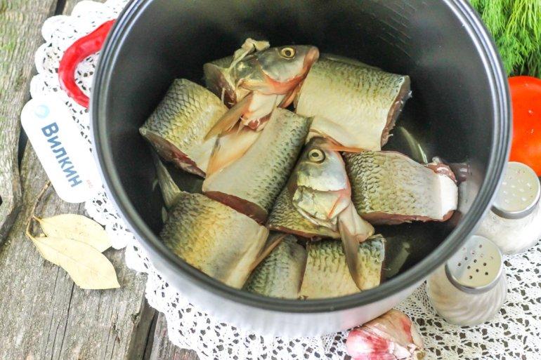 рыба в чаше