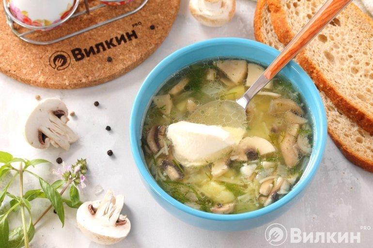 порция грибного супа с картошкой