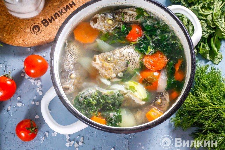 Готовый рыбный суп