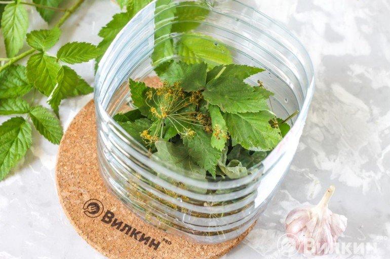 Закладка листьев в емкость