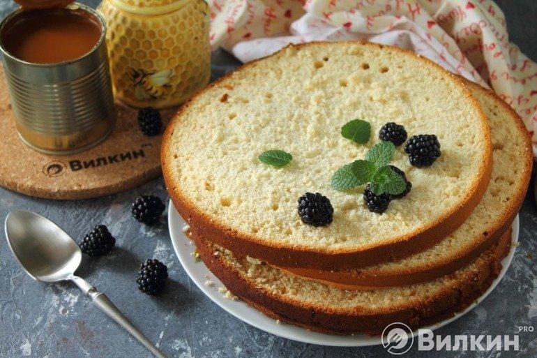 Медовый бисквит для торта в домашних условиях