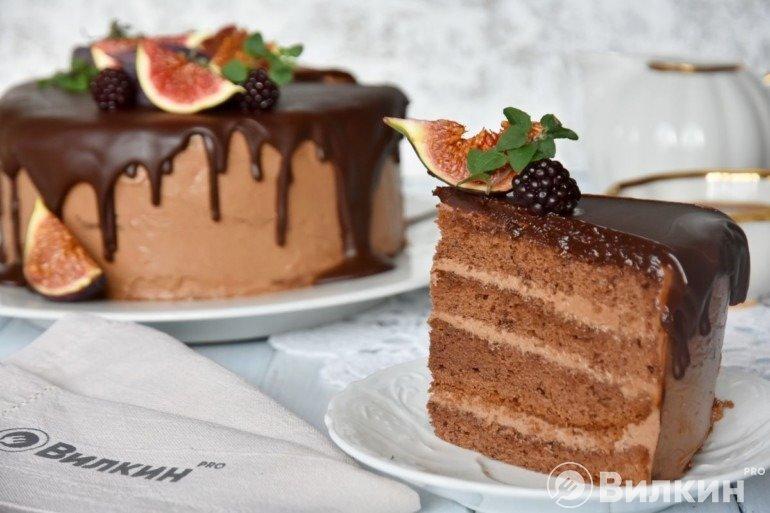 Кусочек торта «Прага»