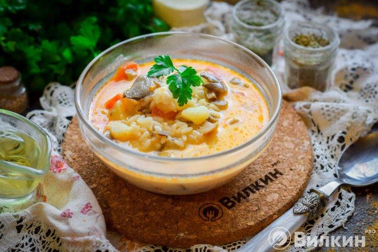 Порция супа из вешенок и шампиньонов