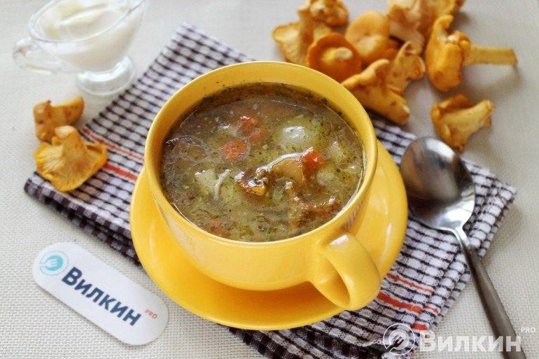 Порция супа из лисичек